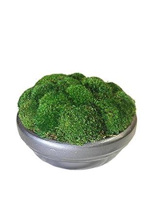Forever Green Art Moss Bowl