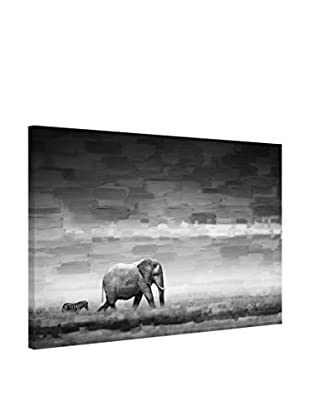 Parvez Taj Leinwandbild Elephant