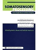 Somatosensory Processing: From Single Neuron to Brain Imaging