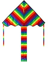 Hengda Kite Rainbow Delta Kite, 60 Inch Kites For Kids Best Easy Flyer,Easy To Assemble, Launch And Fly