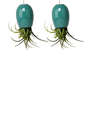 Chive Set of 2 Aqua Large Plant Shades