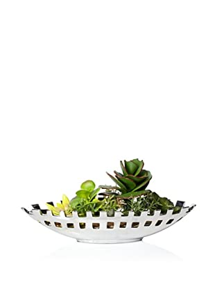 Laura Ashley Faux Succulents in Silver Ceramic Container (Green)