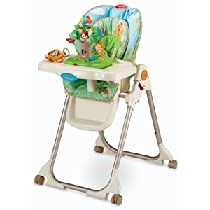 Fisher-Price W3066 Baby Care High Chair