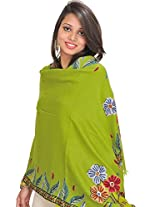 Exotic India Stole from Kashmir with Ari Hand-Embroidery on Border - Color Spinach GreenColor Free Size