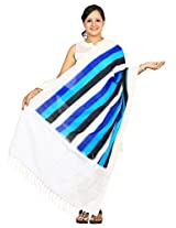 Multicolor Pochamaplly or Ikat Cotton Handloom Dupatta