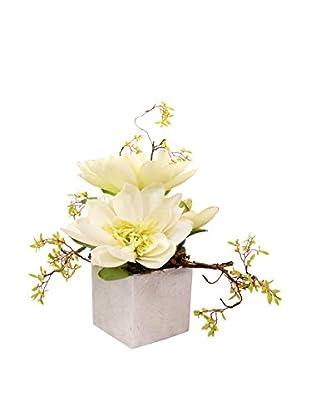 Creative Displays Lotus Floral in Ceramic Container, White