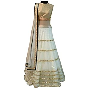 Net lehenga with net dupatta with mati Blouse with Multi work