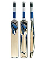 PUMA CRICKET BAT KW KINETIC GT FULL SIZE WITH COVER