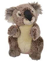Hamleys Baby Koala Soft Toy, Grey (5-inch)