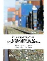 El Mesotelioma: Evolución en la comarca de Cartagena