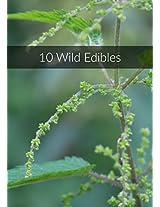 10 Essbare Wildpflanzen im Portrait (German Edition)
