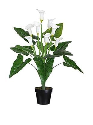Planta Artificial Cala Verde/Blanco