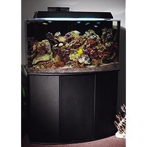 Aquatic Fundamentals Black 16 Upright Bowfront Aquarium Stand