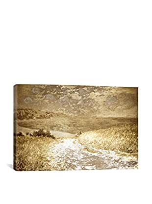 Path Through The Corn I Gallery Wrapped Canvas Print