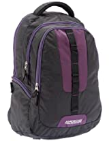 American Tourister Buzz Nylon Black and Purple Laptop Backpack