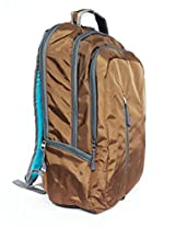 American Tourister Laptop Backpack - Buzz 02 -Brown