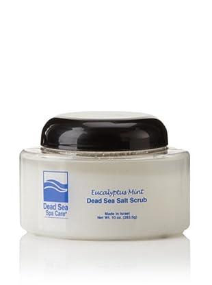 Dead Sea Spa Care Eucalyptus-Mint Salt Scrub, 10 oz