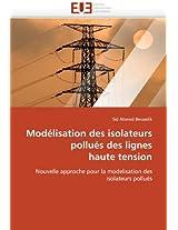 Modelisation Des Isolateurs Pollues Des Lignes Haute Tension (Omn.Univ.Europ.)