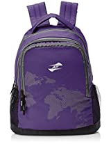 American Tourister Purple Casual Backpack