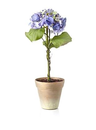 Winward Faux Hydrangea in Terracotta, Purple