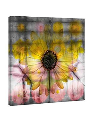 Parvez Taj Leinwandbild Sunflower