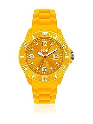 ICE Reloj de cuarzo Unisex Unisex SI.GL.B.S.10 41 mm