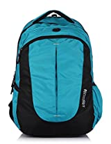 American Tourister Polyester Turquoise Laptop Bag (29W (0) 64 010)