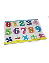 ToyTree Wooden Number and Mathmetical Sign with Knob