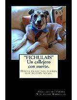 """""""FICHULAIS"""", un callejero con suerte. (Spanish Edition)"""