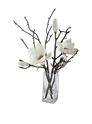 Magnolia in Glass (Champagne)