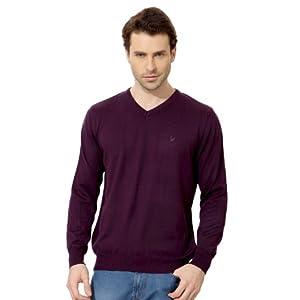 Allen Solly V Neck Regular Fit Sweater