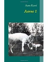 Aarne 1 (Finnish Edition)