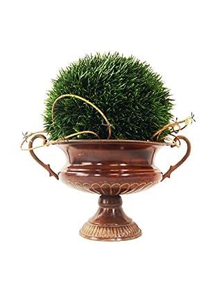 Creative Displays Grass Ball & Mini Vine in Tin Urn, Green/Brown
