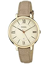 Fossil Analog Multi-Colour Dial Women's Watch - ES3487