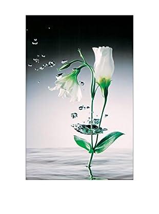 ARTOPWEB Wandbild Zimmerman Crystal Flowers 175x115 cm