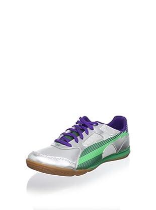 Puma Men's Evospeed 4 Sala Sneaker (Puma Silver-Team Gre)