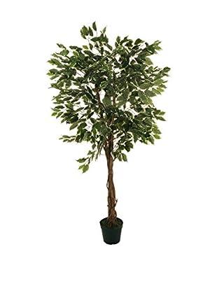 Evergreens Planta Artificial Fixus Exotica Verde