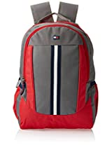 Tommy Hilfiger Back To School Polyester Grey and Red Children's Backpack(TH/BTS07060314/GRY/RED/BPK)