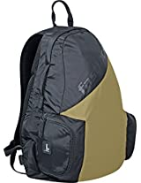 Fastrack Tripsters 36.1 (ltrs) Brown Casual Backpack (A0607NBR01)