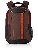 American Tourister Brown and Rust Laptop Backpack (R53 (0) 43 006)