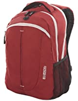 American Tourister Buzz Nylon Red and White Laptop Backpack