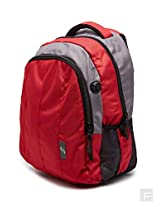 American Tourister Everyday Laptop Backpack
