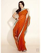 Cotton Ikat Woven Sari