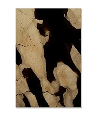 Gallery Direct Eric Heuschele Bone Dry Artwork on Birchwood