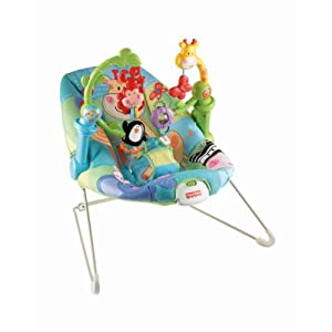 Fisher-Price W9449 Activity Bouncer
