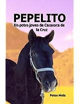 PEPELITO: Un joven potro de Caravaca de la Cruz (Spanish Edition)