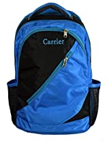 Carrier School / College / Office Backpack Green color Nylon Metty Polyester Material
