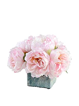 New Growth Designs Assorted Pink Peonies in Glazed Clay Cube Pot (Pink)