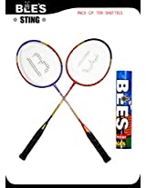 BEES STING BADMINTON SET + 10 NACTOR SHUTTLE