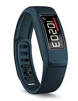 Garmin vivofit 2 Activity Tracker- Blue